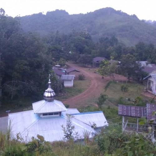 Masyarakat Adat di Paser Berharap dibangun Fasilitas Listrik