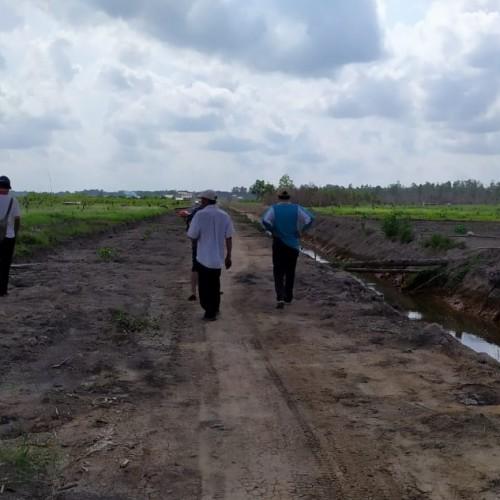 200 Hektare Lahan Disiapkan Untuk Pengembangan Pisang