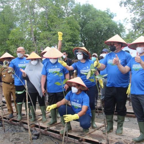 Apresiasi Kideco Tanam 21 Ribu Mangrove, Bupati Paser Harap Partisipasi Perusahaan Lain